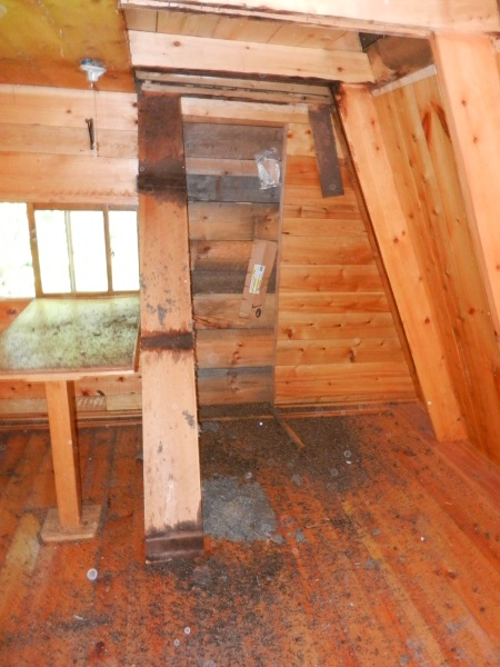 and then Bryan looked into the loft and out came 6 inches of mouse nest.